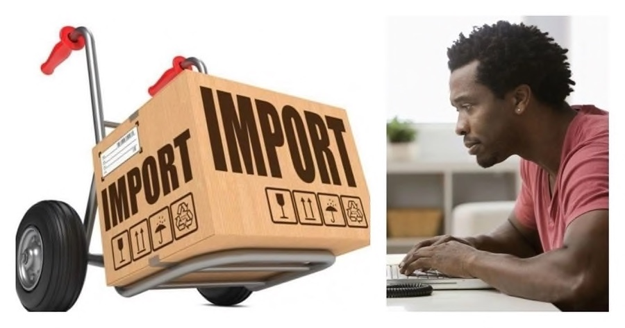 What is Mini Importation business